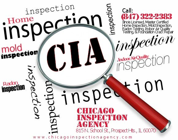 All About Mold – Chicago Inspection Agency